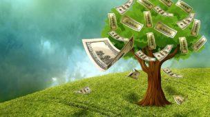 Livros enriquecem mais do que dinheiro